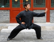 Maestrul Yang Song Quan