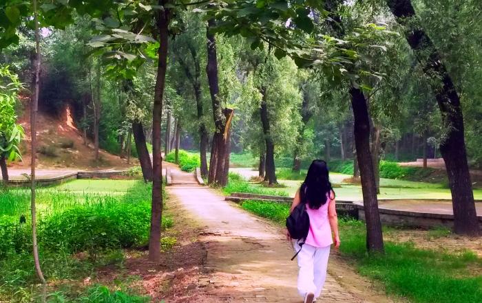 WORKSHOP – TAIYIN si Drumul Femeii in Viata