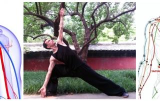 yoga viata prin miscare