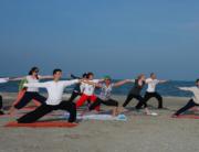 tabara Tai Chi si Yoga Taoista(1)