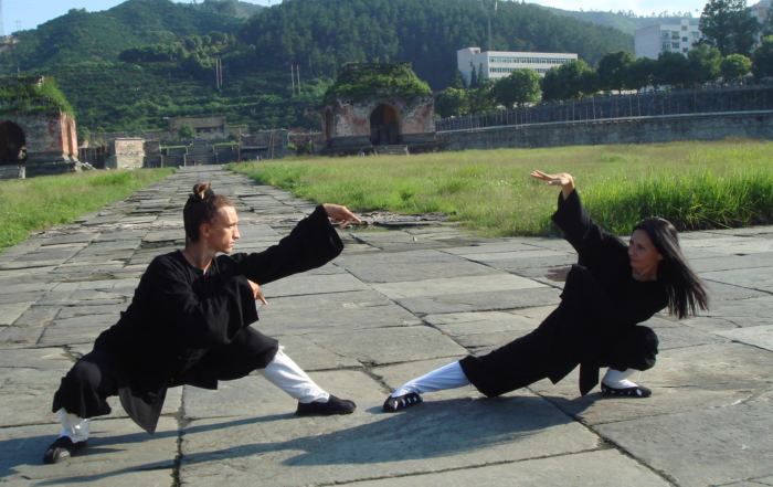 Beneficii Wushu KungFu pentru adulti
