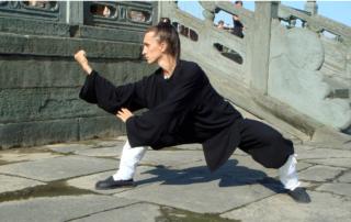 programa cursului wushu