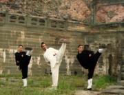 wushu kungfu arte martiale din muntii wudang