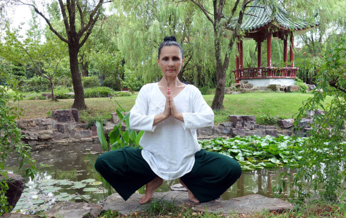 Etapele in practica Nudan