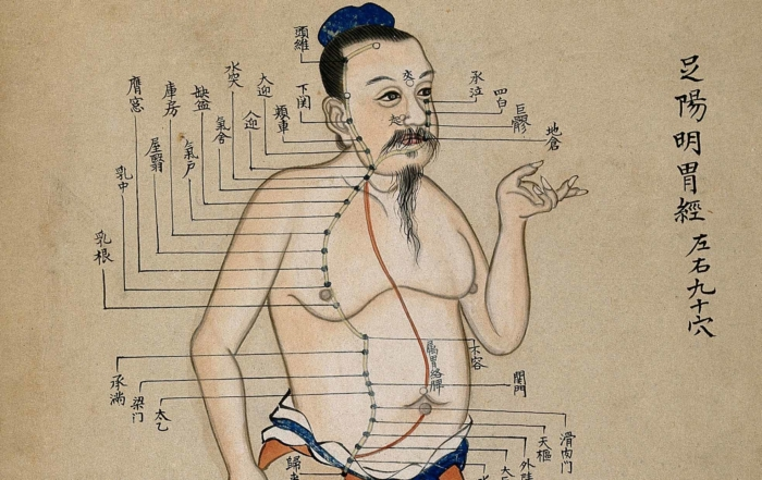 Ce sunt meridianele din Medicina Traditionala Chineza?