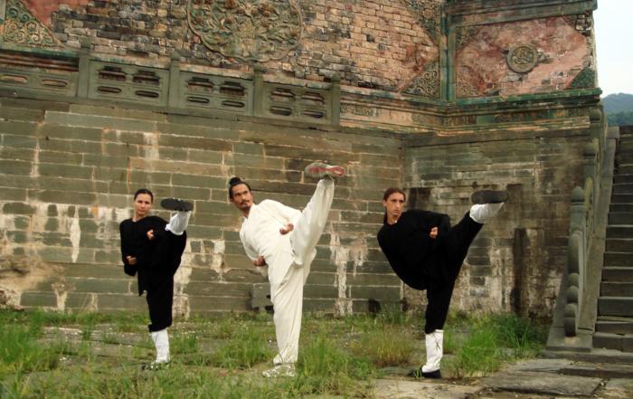 Wushu KungFu – Artele Martiale din Muntii Wudang